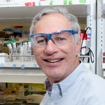 Portrait of Nate Lewis, the George L. Argyros Professor of Chemistry.