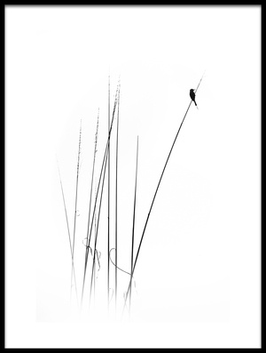 Buy this art print titled A Sabbatical by the artist swapnil.