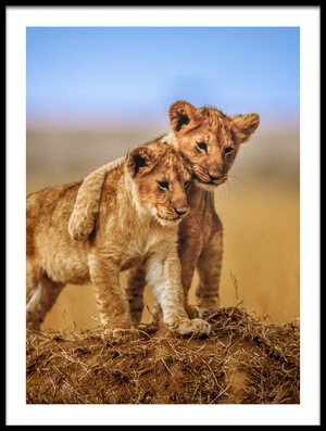 Buy this art print titled Brothers for Life by the artist Jeffrey C. Sink
