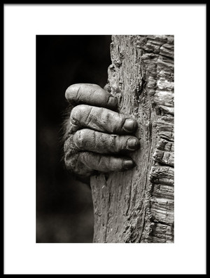 Buy this art print titled The Hand by the artist Michael Castellano
