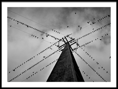 Buy this art print titled Wired by the artist Rui Caria