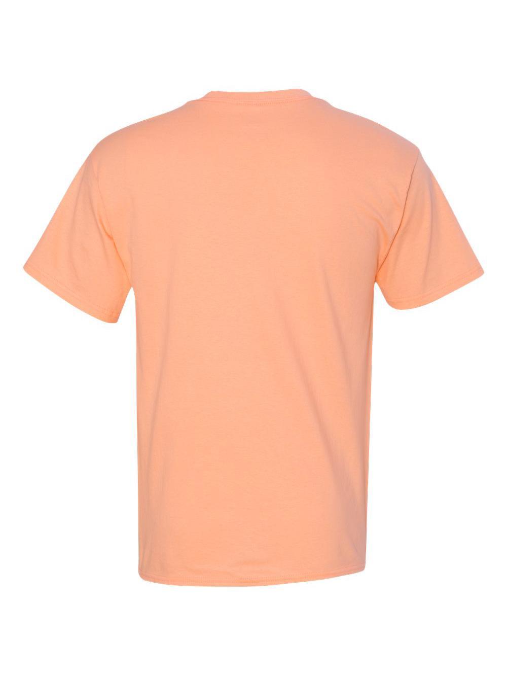 Hanes-Tagless-T-Shirt-5250 thumbnail 16