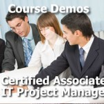 IT Associate Project Manager
