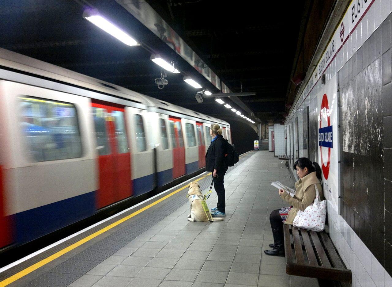 Guide dog user on the tube Euston Square
