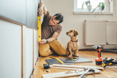 Dog next to owner during renovation