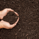 How To Make The Best Mulch For A Vegetable Garden