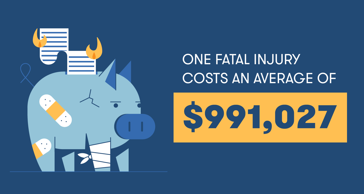 "Illustration: ""One fatal injury costs an average of $991,027"""