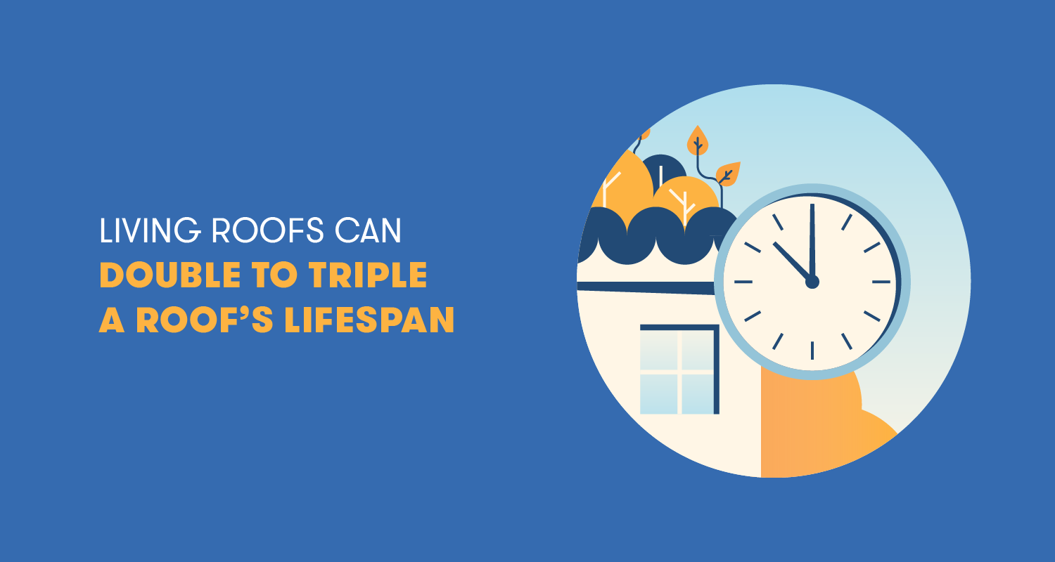 living roofs can double to triple a roof's lifespan