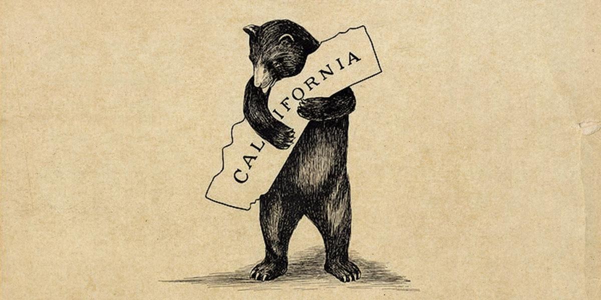 California bear 0