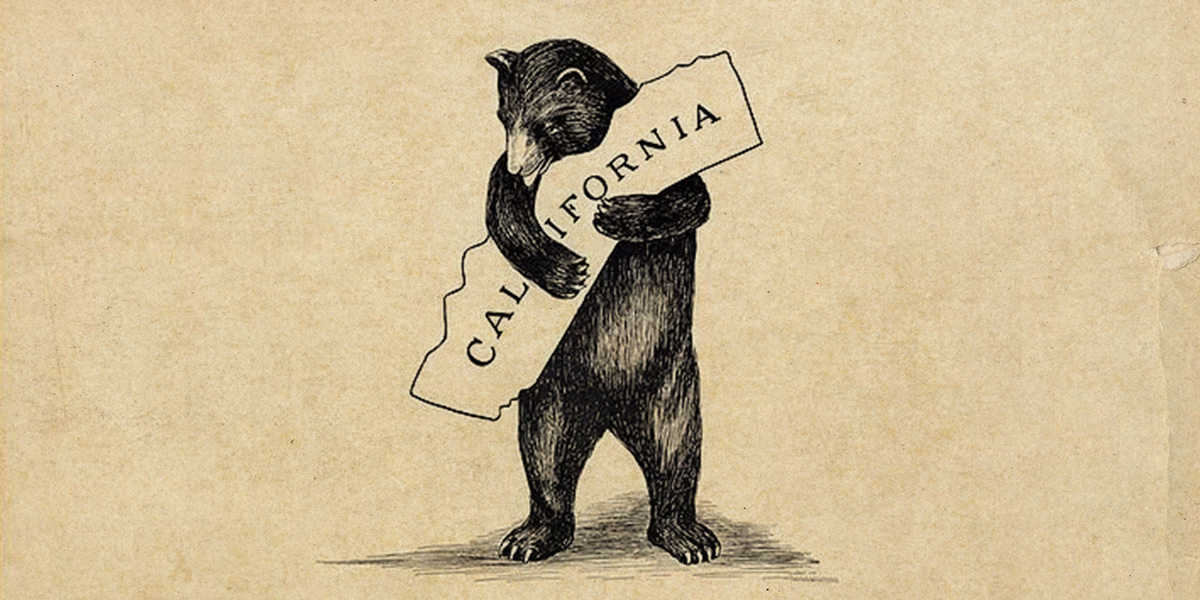 California bear 0