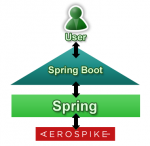 springboot and Aerospike