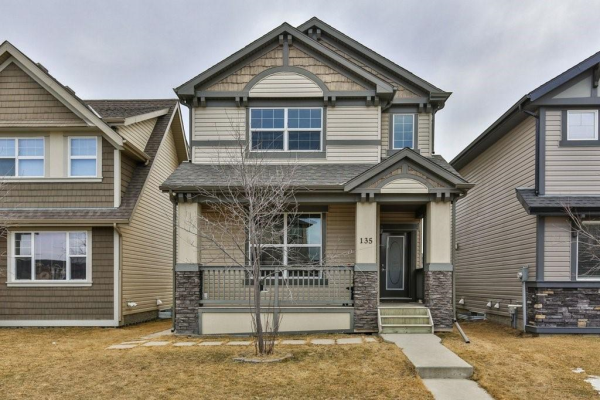 135 SKYVIEW SPRINGS GD NE, Calgary