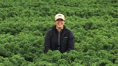 Amy's careers kale field