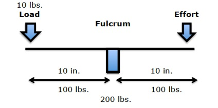 In a first-class lever, the fulcrum is in between the load and the effort. The fulcrum of a first-class lever is the place where the load is the greatest. In the spine, the fulcrum of the first-class lever of upright posture is primarily the vertebral body/disc, and the two facet joints.