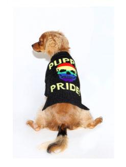 Skull Cashmere - Puppy Pride
