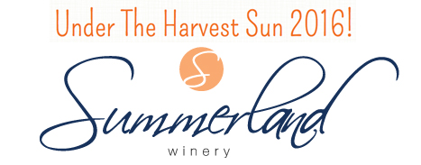 Amanda Mills Los Angeles under the harvest sun Summer Lane winery