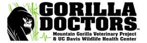 Amanda Mills Los Angeles guerrilla doctors rescue