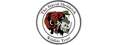 Amanda Mills Los Angeles David sheldrick wildlife trust