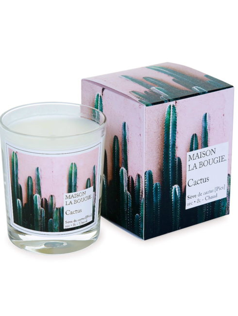 Cactus Tuberose Scented French Candle - MAISON LA BOUGIE