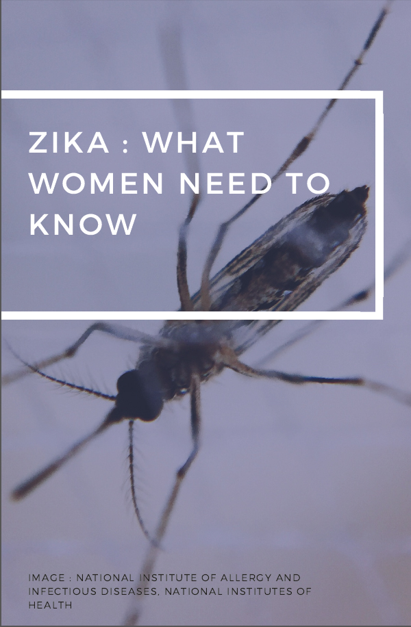 An infographic slide presentation outlines what women may need to know about Zika, from its transmission to its tie to microocephaly. (Marisa Zocco, USC Annenberg Media)