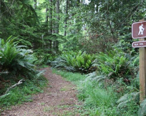 Blake Island State Park Trails