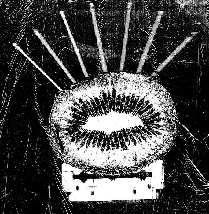 Kiwi punk