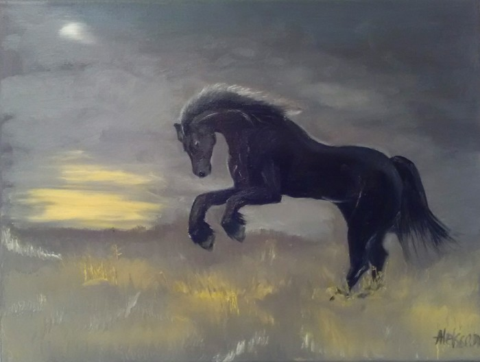 The black mustang in the prairie
