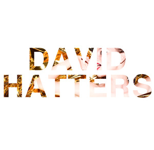 DAVID HATTERS