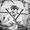 Miles Davis | Massive Burn Studios