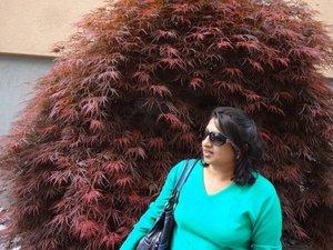 Namrata Kanwar