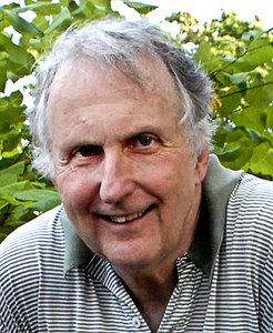 Stephen Bitel