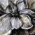 Gardenia Formation