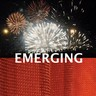 EMERGING--a juried exhibition at ARC in Oct-Nov