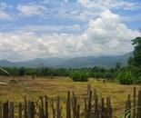 Mai Sai, Thailand