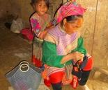 Northern Viet Nam