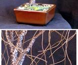 SMALL BONSAI ELM - Wire Tree Sculpture