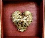 corazón de maiz