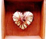 corazón atado