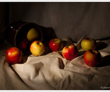 Still Life with apples II