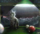The cat on billard
