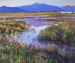 Evening in the Marsh