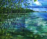 Mangrove Clouds
