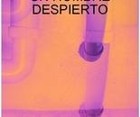 DELIRIOS DE UN HOMBRE DESPIERTO