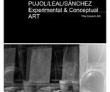 EXPERIMENTAL & CONCEPTUAL ART
