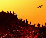 Bloody Sunset at Planet Kormoran