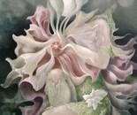 Flora Incognito