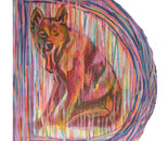 D is for Dingo