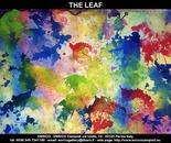 Tht leaf