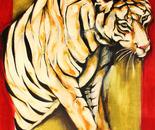 tigre_tiger