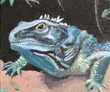 Tuatara, From the Beginning